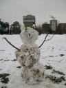 snowfox.JPG: 500x667, 106k (September 02, 2009, at 11:28 AM EST)