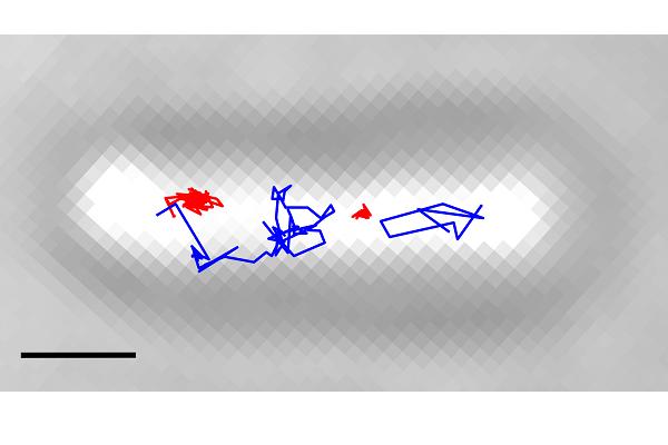 interestexample bound unbound tracks half